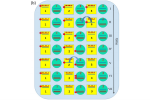 Digital quantum simulators in a scalable architecture of hybrid spin-photon qubits