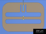 New material platform for superconducting transmon qubits with coherence times exceeding 0.3 milliseconds